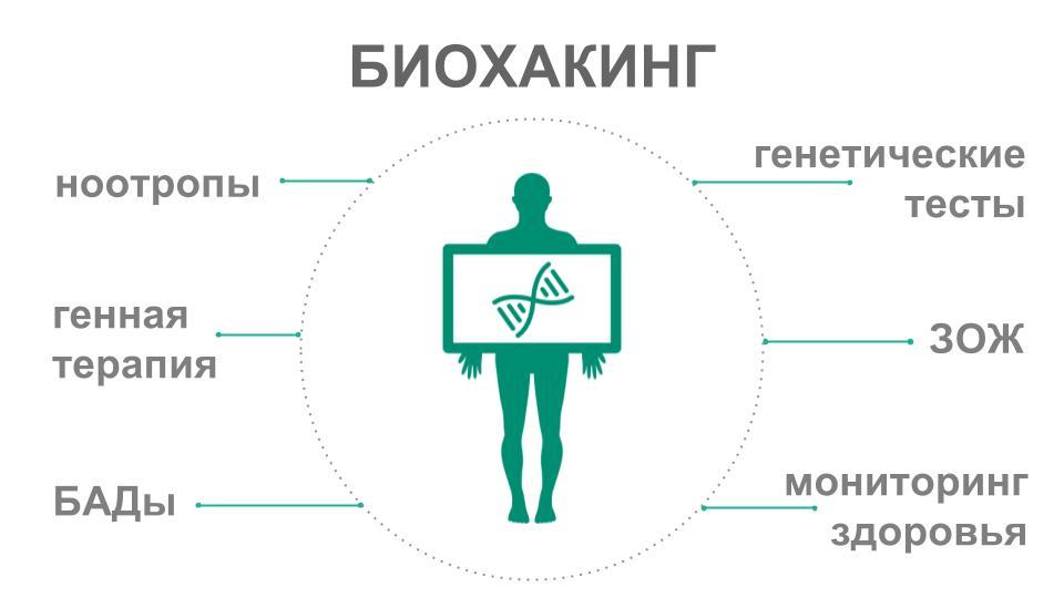 printsipy-i-metody